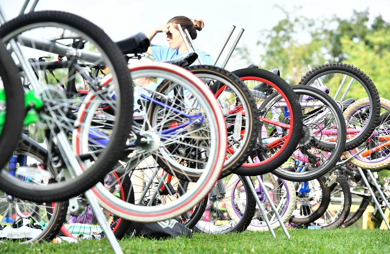 group of mountain bikes