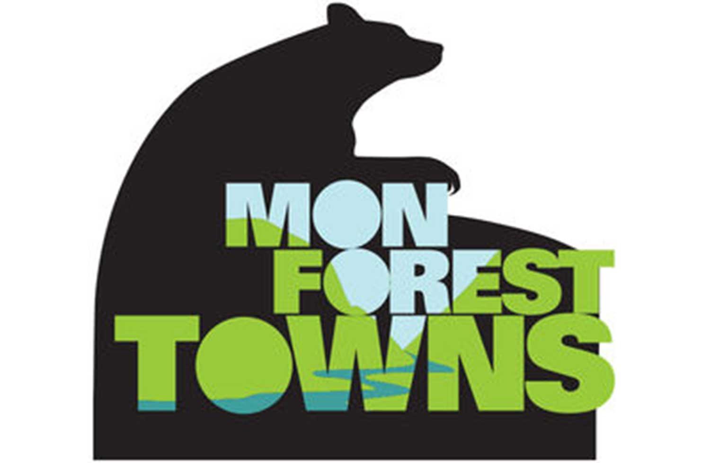 mon forest bear logo